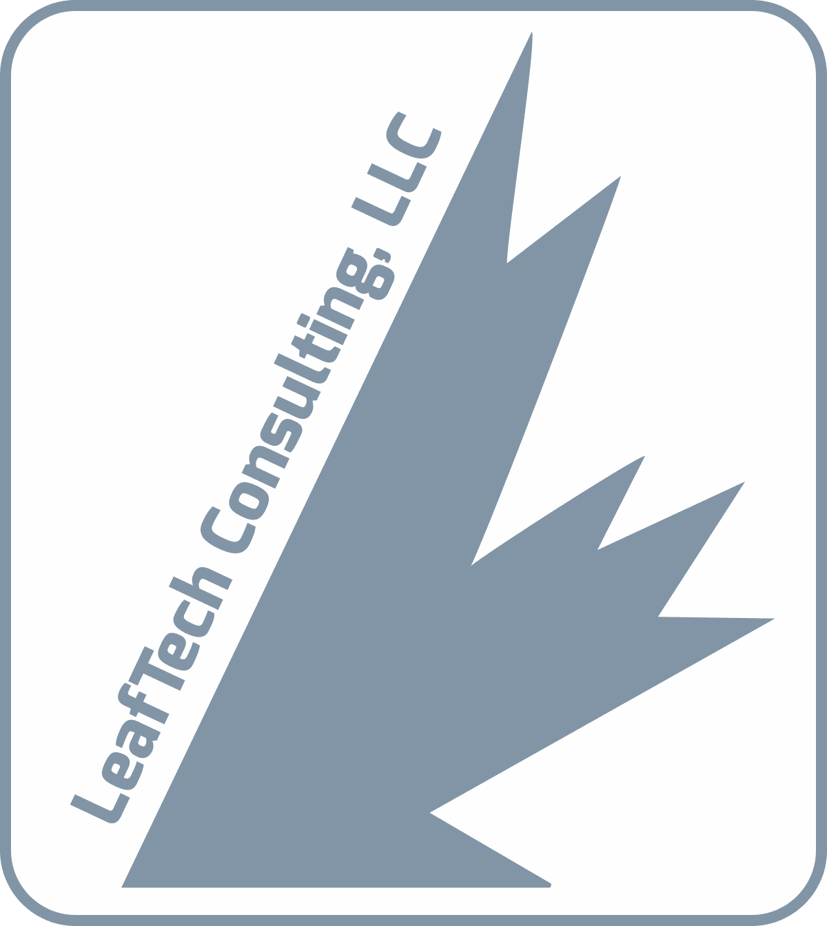 Retina logo LeafTech IT Consulting and services Centennial CO